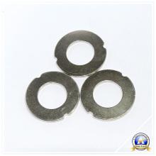 Ring Neodymium Magnets with Customized Shape