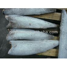 Ölfisch zum Verkauf