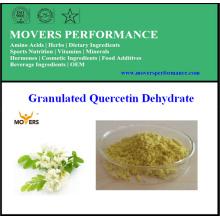Pigment naturel de haute qualité Quercétine déshydratée (quercétine 98%)