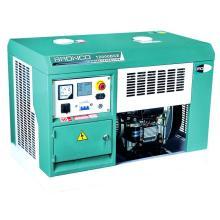 Portable Diesel Generator (BN12000DCE)