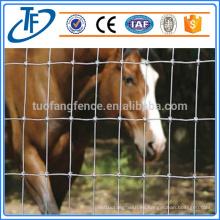 Cerca de la granja de la granja de la oferta de la fábrica / cerca del campo y cerca del ganado / cerca de la granja del caballo