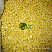 Venta caliente no gmo maíz dulce enlatado