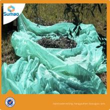 90g green plastic nets for olive harvest