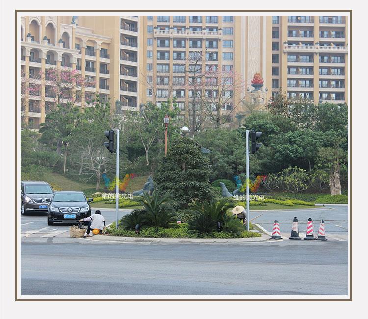 300mm-pedestrian-traffic-light_11