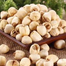 Nelumbinis chineses do sémen, semente chinesa dos lótus sem núcleo