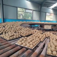 Ceramic Lining Brick Sanitary Ware Alumina Ceramic Ball