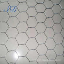 Maille hexagonale de maille de 25mm en Chine