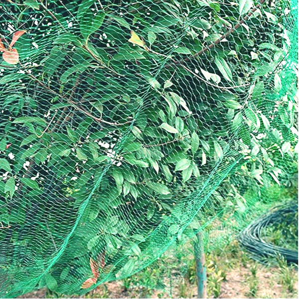 garden anti bird netting