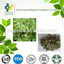Chinese mugwort leaf extract