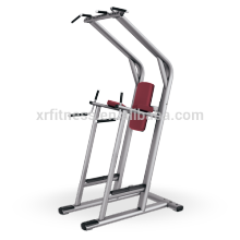 Fitnessgeräte China ProdukteAssisted Chin UpDip