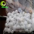 Anidrido maleico químico industrial para intermediários de fibra