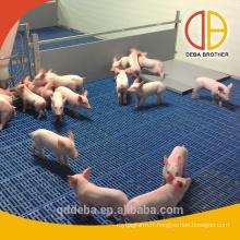 caisses de sevrage de panneau de pvc caisses populaires de garde de cochon de maintien au chaud