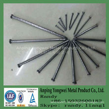Common Wire Nail Factory mit Zertifikat ISO9001