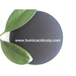 Black mineral Fulvic acid