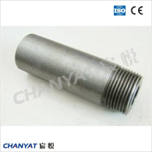 A312 (TP304H, TP316H, TP317) Stainless Steel Pbe/Bbe/Tbe Ecc. Pipe Nipple