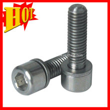 Gr7 Mini Titanium Bolt and Titanium Screw