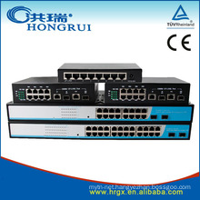 Professional Gigabit Ethernet Switch