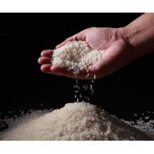 La Chine meilleur riz rond de grain court de qualité pour le riz de sushi, riz de koshihikari