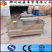 Best Selling Carrot/Ginger/Potato Washing And Peeling Machine