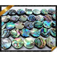 Los granos de la moneda plana, los granos de la joyería de Shell del olmo venden al por mayor (APS018)