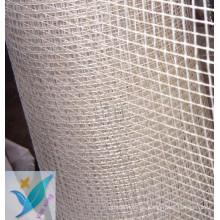 2.5 * 2.5 10m m * 10m m red de la fibra de vidrio de la pared 100g