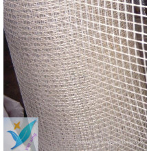 2.5 * 2.5 10mm * 10mm 100g Rede de fibra de vidro de parede