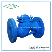 DIN Standard Cast Iron Flange End Lift Check Valve