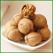 Chinese Organic Natural Walnut