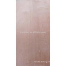 1220 * 2440mm 1250 * 2500mm verschiedene Material Sperrholz
