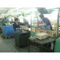 for Lexus Es330, Toyota Solara Car Starter for Repair Shop OEM Code 228000-9900