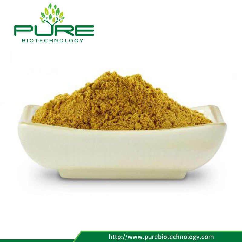 Sea buckthorn fruit juice flavor powder