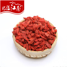 New arrival Ningxia wholesale bays goji berry