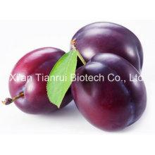 Poudre de jus de prune / poudre de prunelle en poudre / extrait de prune en poudre concentrée en poudre / concentré de jus de prune