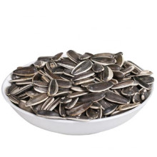 Export Grade Raw Sunflower Seeds in bulk Sun Flower Seeds