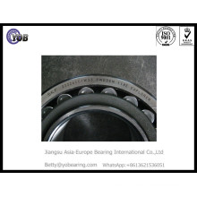 High Temperature Resistance Nu226 Ecp Cylindrical Roller Bearing