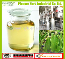 China supplier camphor essential oil