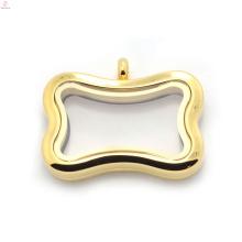 Dupla face de vidro claro design amante do cão flutuante encantos medalhão ímã
