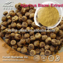 Natural Agaricus Subrufescens Peck Extract Powder 10%-40% Polysaccharides High Quality Low Price Improve Immune System