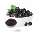 Poudre de baie de goji noire de qualité alimentaire biologique