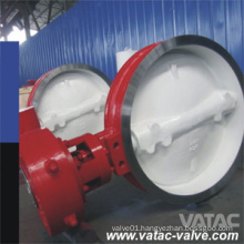Fluorine Lined/PFA/Pfp Liner A351 CF8/Ss304/Wcb Waferlug&Flanged Butterfly Valve