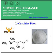 Weight Loss Amino Acid L-Carnitine Base
