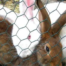 galvanized hexagonal wire mesh/Rabbit wire mesh