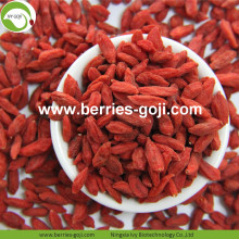 Hot Sale Wolfberry tibetano seco