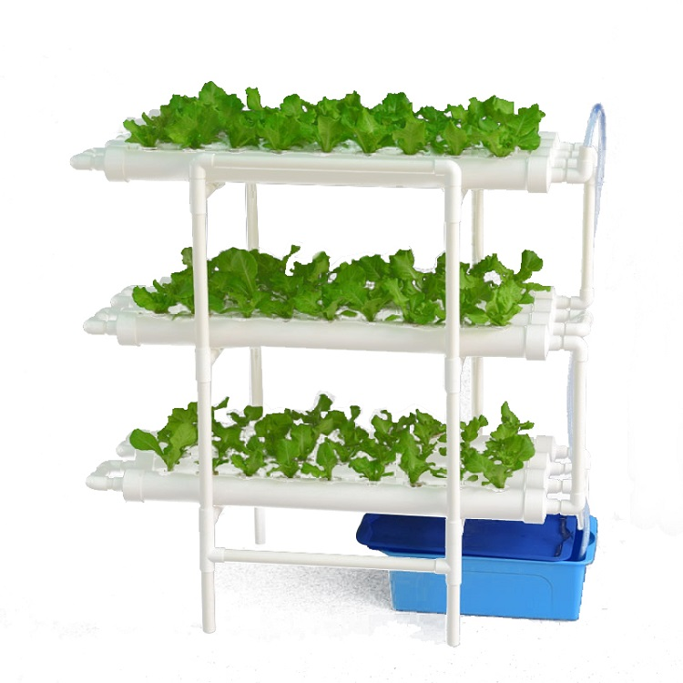 Nft Diy Home Garden Grow Kit Indoor