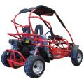 Childrens Offroad Sand 4 Wheel Drive China Buggy