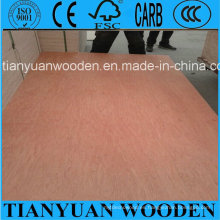 Venta caliente 3mm 6mm 9mm 12mm 15mm 18mm madera contrachapada comercial