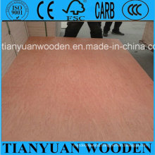 Hot Sale 3mm 6mm 9mm 12mm 15mm 18mm Commercial Plywood