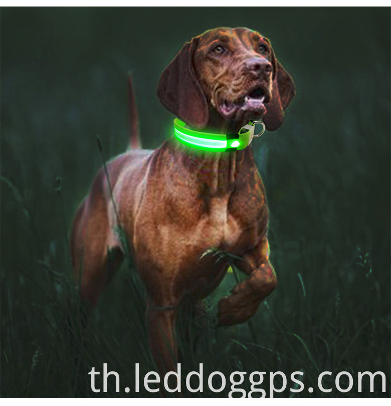 Green Lighting Dog Collar