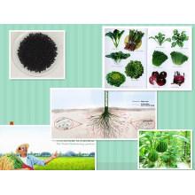 Compound Granular Organic Micro Water Soluble NPK 4-3-1 Base Fertilizer