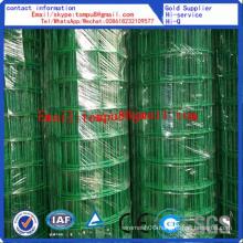 Euro Fence/PVC-Coated Euro Mesh Fence